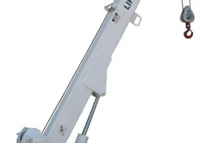 Cranes-Liftmoore-6036