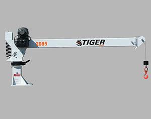 Cranes-Tiger-2085